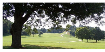 Pine Forest golf course in Bastrop