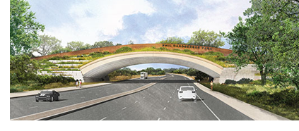 A rendering of the land bridge.